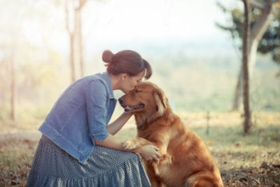 Beautiful Woman With A Cute Golden Retriever Dog